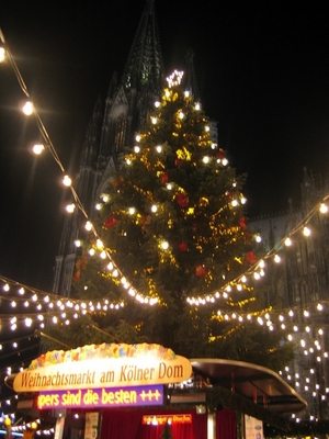 Christmas tree in front of the Dom at night